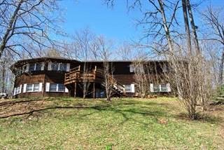 Single Family for sale in 1206 D Hwy, Van Buren, MO, 63965