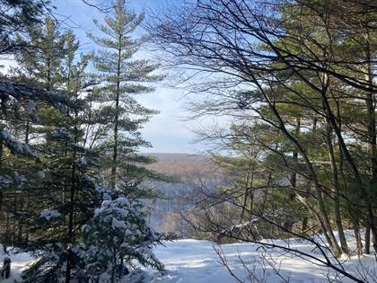 Lots And Land for sale in 0 Blue Mountain Rd, #0, Santa Clara, NY, 12980