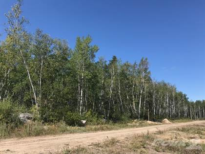 Residential Property for sale in 10 Bris Cove, North West Manitoba, Manitoba