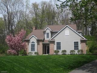 Single Family for sale in 75 Ridge Road, Greater Panther Valley, NJ, 07840