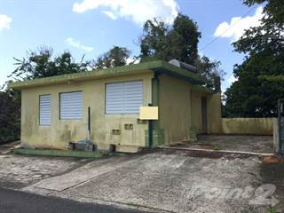 Residential Property for sale in NARANJITO - BO ANONES - PRECIO REDUCIDO, Naguabo, PR, 00718