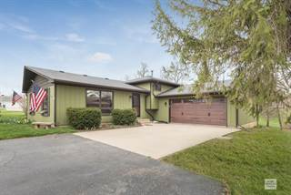 Single Family for sale in 333 Mary Ann Drive, Lake Holiday, IL, 60552