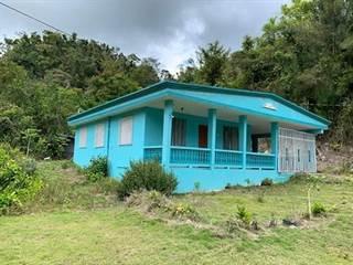 Single Family for sale in 0 BO ARROZAL, Arecibo, PR, 00688