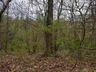 Land for sale in 505 N 4th Street, Greater Westwood, MI, 49009