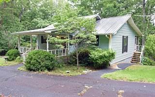Single Family for sale in 465 V ADDINGTON RD, Blairsville, GA, 30512