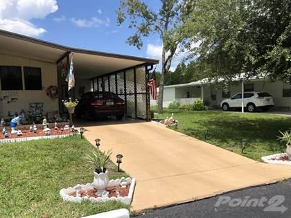 Residential Property for sale in 12359 Porsche Lane, Annutteliga Hammock, FL, 34614
