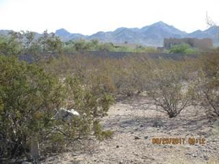 Land for sale in 11093 S SANTA COLUMBIA Drive, Goodyear, AZ, 85338