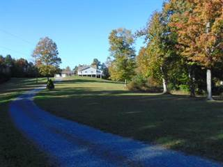 Single Family for sale in 455 MARVIN DRIVE, Mt. Lookout, WV, 26678