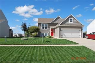 Single Family for sale in 3735 AMBER OAKS Drive, Howell, MI, 48855