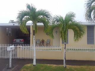 Single Family for sale in B-3 2, Patillas, PR, 00723