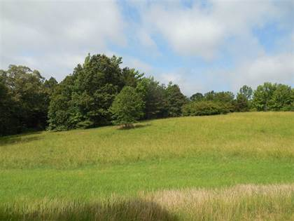 Lots And Land for sale in 0 COUNTY RD 62, Oakland, MS, 38948