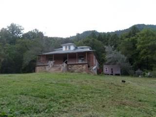 Single Family for sale in 459 Rail Drive, Jonesville, VA, 24281