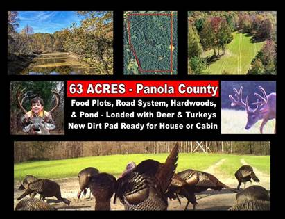Lots And Land for sale in Old Panola Road, Sardis, MS, 38666