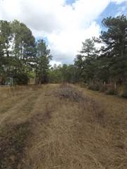 Land for sale in Hwy 62, Buna, TX, 77612