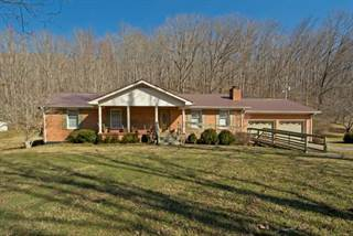 Single Family for sale in 369 Lick Creek Road, Green Sulphur Springs, WV, 25976