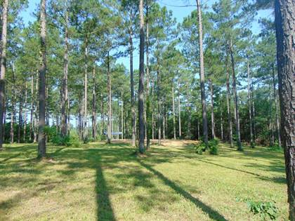 Lots And Land for sale in 3209 Bahalia Rd, Wesson, MS, 39191