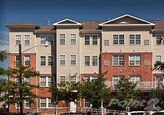 Studio Apartment Elizabeth Nj houses & apartments for rent in elizabeth nj - from $696 a month