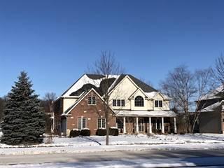 Single Family for sale in 836 Black Walnut Drive, Sugar Grove, IL, 60554
