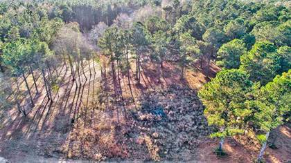 Lots And Land for sale in 2200 HWY 541 NONE, Mendenhall, MS, 39114