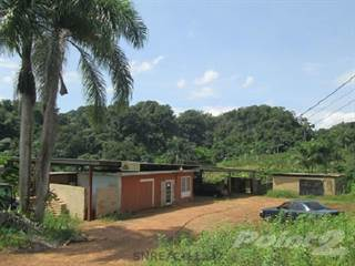Farm And Agriculture for sale in Rio Arriba, Arecibo, Arecibo, PR, 00612