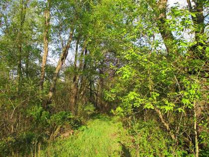 Lots And Land for sale in 00 GODFREY RD., Bancroft, MI, 48414