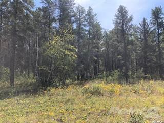 Land for sale in 9 Agassiz, RM of Hudson Bay No 394, Saskatchewan