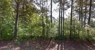 Land for sale in 1539 Downing Road, Green Farm, NC, 27834