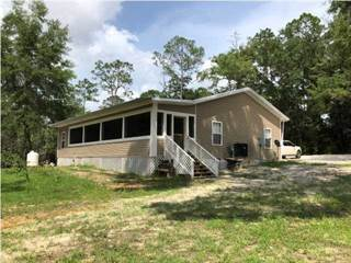 Single Family for sale in 40048 SW FOREST RD 181, Bristol, FL, 32321