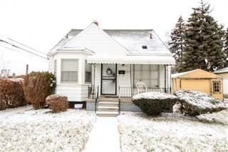 Single Family for sale in 19133 BELAND Street, Detroit, MI, 48234