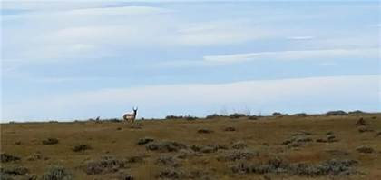 Lots And Land for sale in 320 Acres Golf Course Road, Roundup, MT, 59072