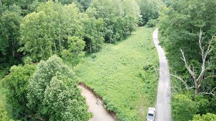 Lots And Land for sale in 1234 Leading Creek, Big Springs, WV, 26137