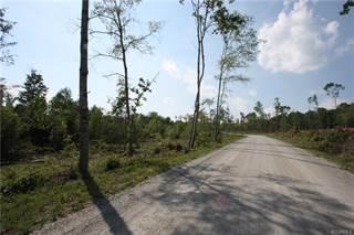 Land for sale in Lot 3 Sec 2 Kool Lane, Powhatan, VA, 23139
