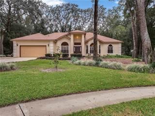 Single Family for sale in 1330 DEER LAKE CIRCLE, Apopka, FL, 32712