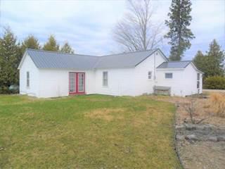 Single Family for sale in 4219 N Ocqueoc Road, Millersburg, MI, 49759