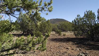 Lots And Land for sale in 2148 E Fir Street, Williams, AZ, 86046