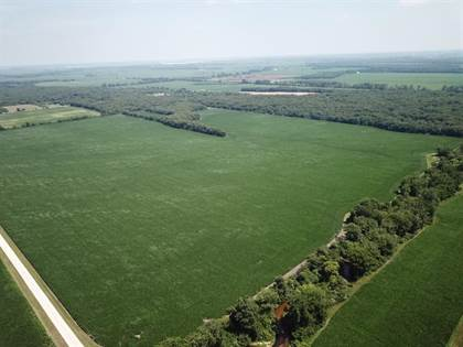 Farm And Agriculture for sale in 0 800 N, Lake Village, IN, 46349