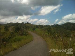 Lots And Land for sale in Bo. Yayales Adjuntas PR, Adjuntas, PR, 00601