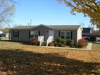 Residential Property for sale in 128 Walnut Street, Stonefort, IL, 62987