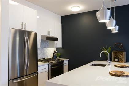 Apartment for rent in 936 Scott St, San Francisco, CA, 94115