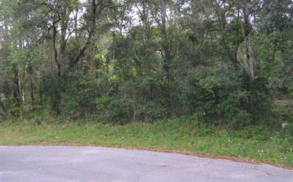 Lots And Land for sale in TBD 86TH TERRACE, Live Oak, FL, 32060