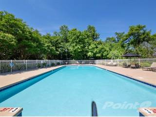 Apartment for rent in Woodberry Apartments - Chestnut, Asheville, NC, 28801