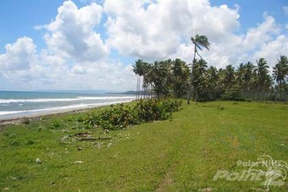 Lots And Land for sale in Beach property, Gaspar Hernandez, Puerto Plata