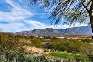 Single Family for sale in 37745 S Skyline Drive, Tucson, AZ, 85739