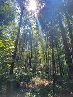 Lots And Land for sale in 0 White Road, Hazlehurst, MS, 39083