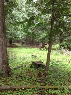 Lots And Land for sale in 3794 S Elk Rd, Harrison, ID, 83833