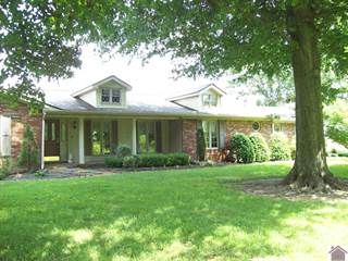Single Family for sale in 576 LaCenter Road, Wickliffe, KY, 42056