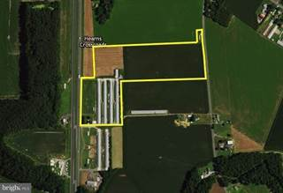Farm And Agriculture for sale in 32708 OLD STAGE ROAD, Laurel, DE, 19956