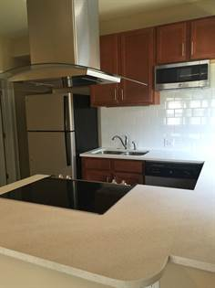 Apartment for rent in 721 Eastgate Ave., University City, MO, 63130