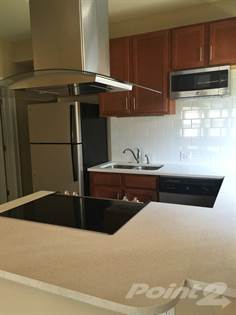 Apartment for rent in 721 Eastgate, University City, MO, 63130