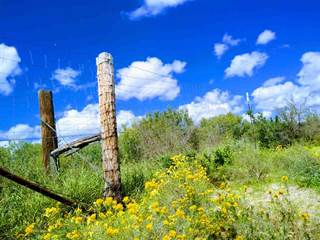 Land For Sale Laredo Tx Vacant Lots For Sale In Laredo Point2 Homes